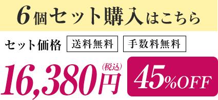 6個セット購入はこちら セット価格16,380円(税込) 45%OFF 送料無料 手数料無料