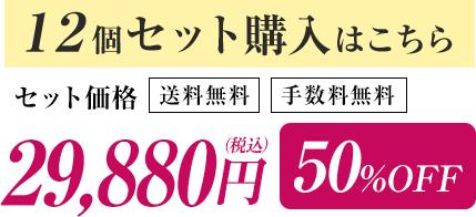 12個セット購入はこちら セット価格29,880円(税込) 50%OFF 送料無料 手数料無料